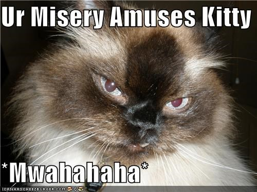 Ur Misery Amuses Kitty  *Mwahahaha*
