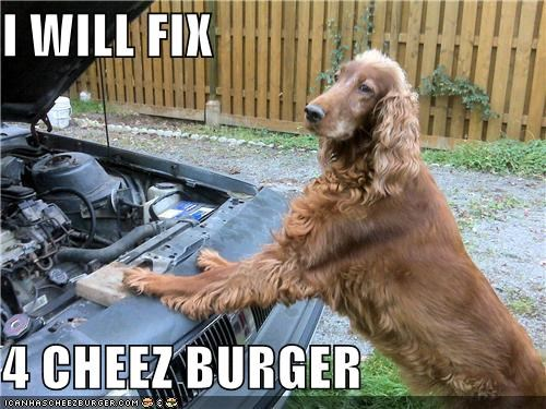 I WILL FIX   4 CHEEZ BURGER