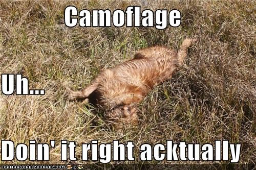 Camoflage Uh... Doin' it right acktually