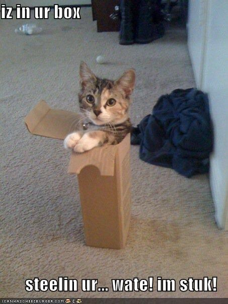 iz in ur box  steelin ur... wate! im stuk!