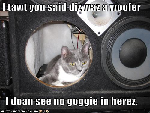 I tawt you said diz waz a woofer  I doan see no goggie in herez.