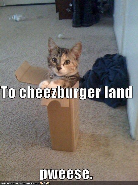 To cheezburger land pweese.