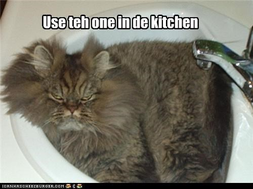 Use teh one in de kitchen