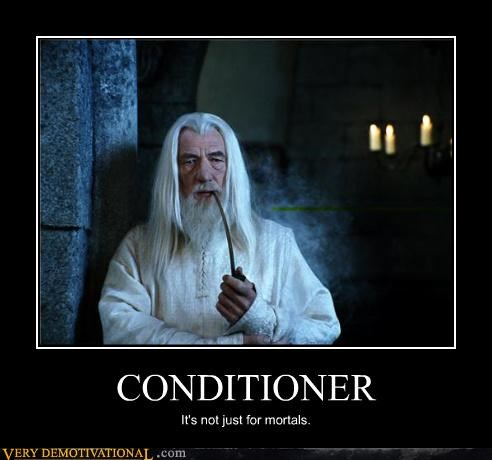 Gandalf's Hair Is Luxurious