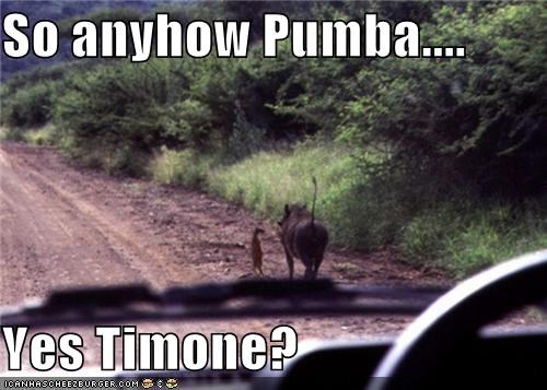 So anyhow Pumba....  Yes Timone?
