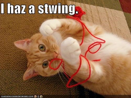 I haz a stwing.