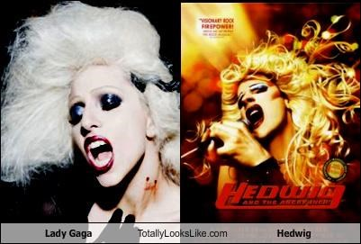 Lady Gaga Totally Looks Like Hedwig