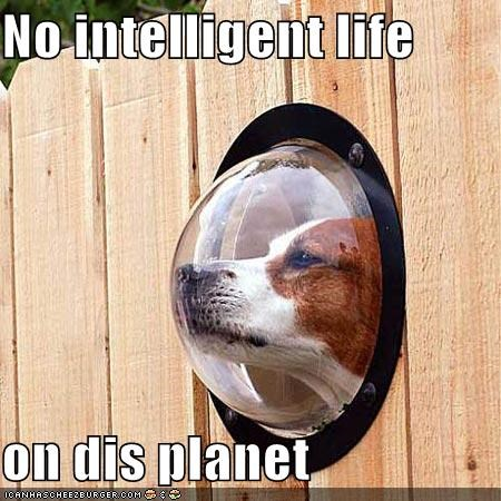 No intelligent life  on dis planet