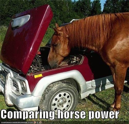 caption,captioned,comparing,comparison,horse,horse power,inspecting,pun,truck