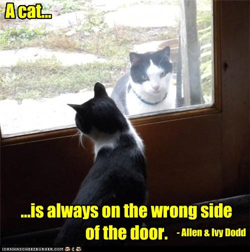 adage,allen dodd,always,caption,captioned,cat,door,ivy dodd,quote,side,wrong