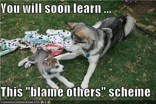"You will soon learn ...  This ""blame others"" scheme"