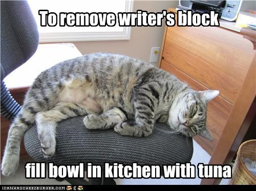 block,bowl,caption,captioned,cat,double meaning,fill,instructions,kitchen,pun,remove,removing,tuna,writers block