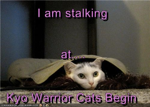 I am stalking at.... Kyo Warrior Cats Begin