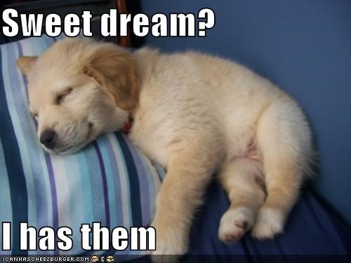 Sweet dream?  I has them
