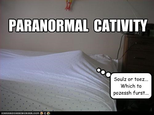 caption,captioned,cat,decisions,hiding,paranormal activity,possession,pun,souls,toes,under covers