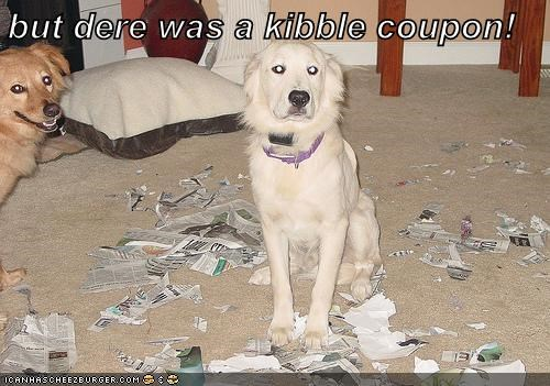 but dere was a kibble coupon!
