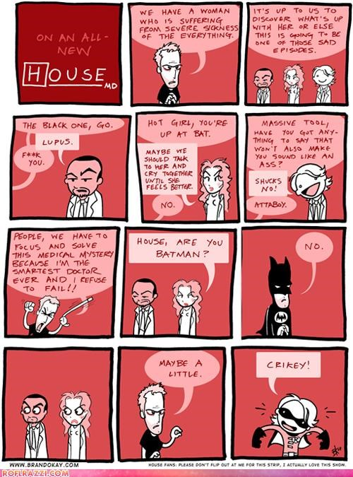 ...In Which It is Revealed That Dr. House Secretly Fights Crime
