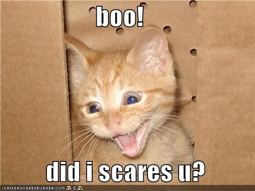 boo!           did i scares u?