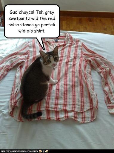 Gud choyce! Teh grey swetpantz wid the red salsa stanes go perfek wid dis shirt.
