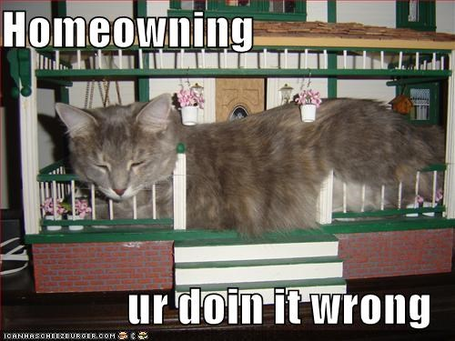 Homeowning  ur doin it wrong