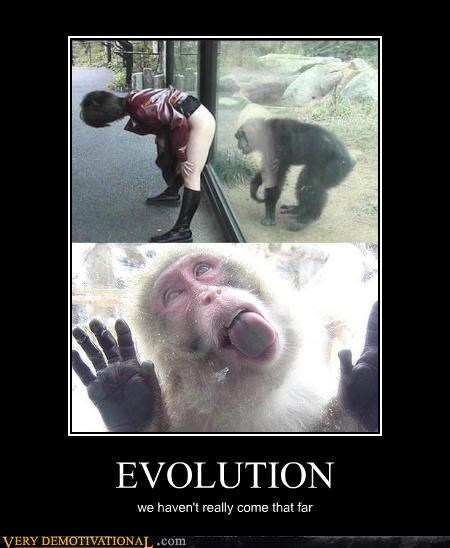 animals,debate,evolution,hilarious,hot issues,licking,sex,wtf