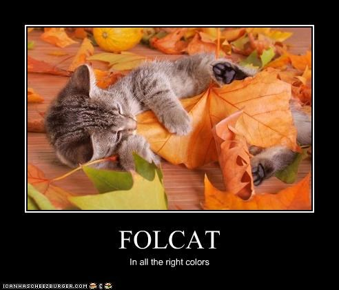 FOLCAT