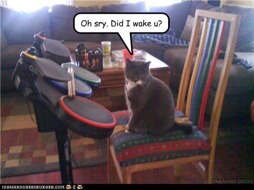 asking,caption,captioned,cat,drums,human,ignorant,ohai,question,rock band,video game