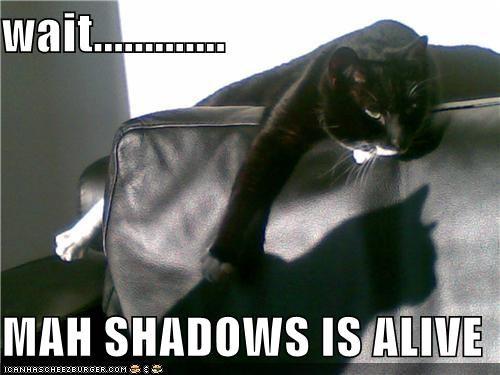 wait.............  MAH SHADOWS IS ALIVE