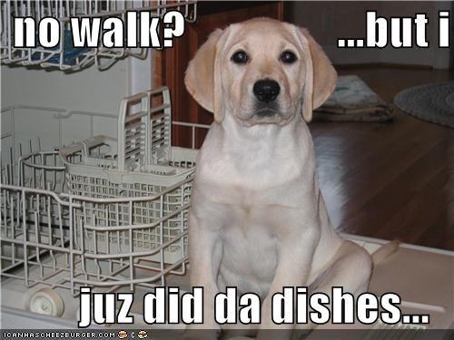 no walk?                 ...but i  juz did da dishes...