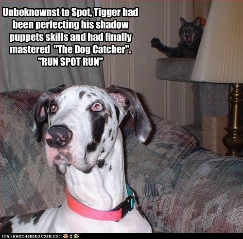 "Unbeknownst to Spot, Tigger had been perfecting his shadow puppets skills and had finally mastered  ""The Dog Catcher"".   ""RUN SPOT RUN"""