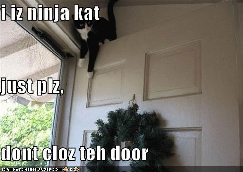 i iz ninja kat just plz,  dont cloz teh door