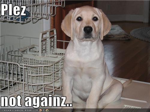 Plez  not againz..