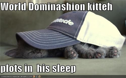 World Dominashion kitteh  plots in  his sleep