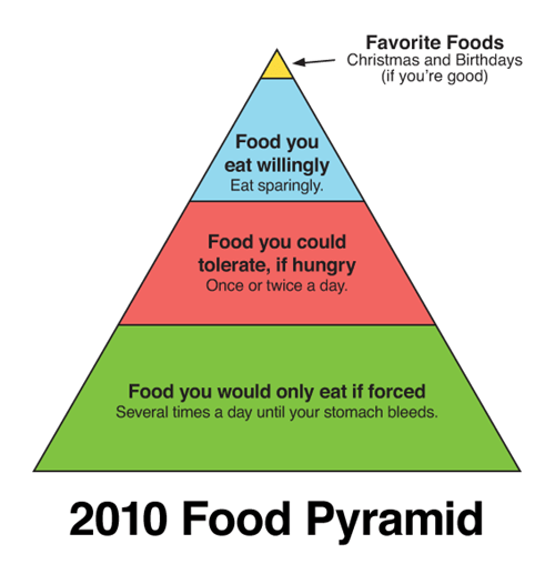 Related Pictures food pyramid for adolescents pictures