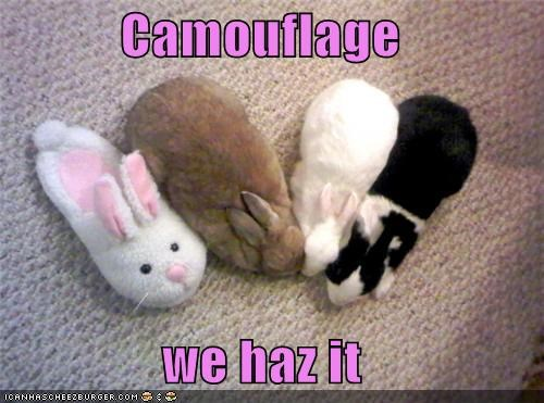 Camouflage  we haz it