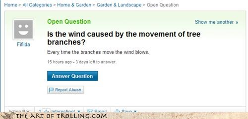 The Answers are Coming from the Trees!