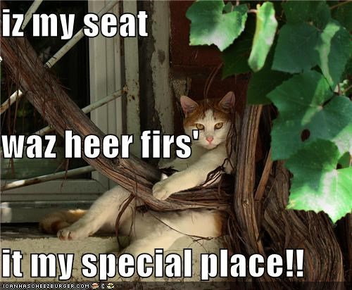 iz my seat  waz heer firs' it my special place!!