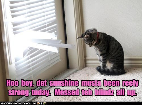 Hoo  boy,  dat  sunshine  musta  been  reely strong  tuday.   Messed  teh  blindz  all  up.