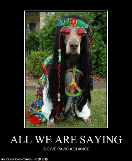 all we are saying,costume,dressed up,give peace a chance,great dane,Hall of Fame,hippy,lyrics,parody,paws,peace,song