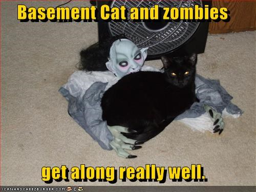 Basement Cat and zombies   get along really well.