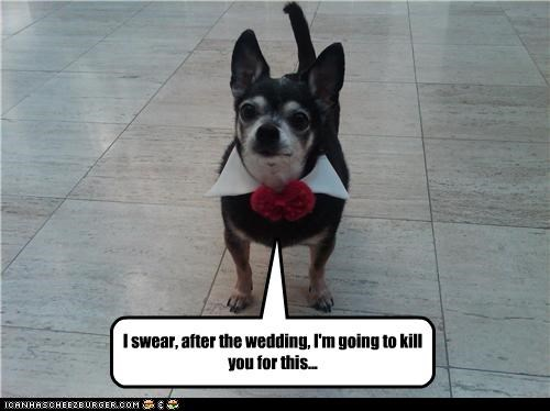 I swear, after the wedding, I'm going to kill you for this...