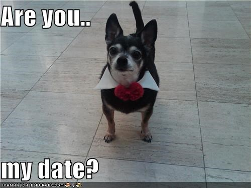 Are you..  my date?