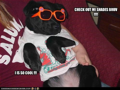 CHECK OUT MI SHADES BRUV !!!!