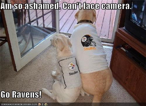 Am so ashamed. Can't face camera.  Go Ravens!