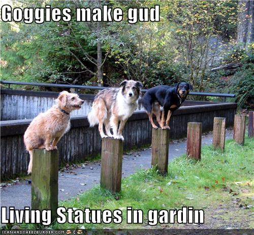 Goggies make gud  Living Statues in gardin