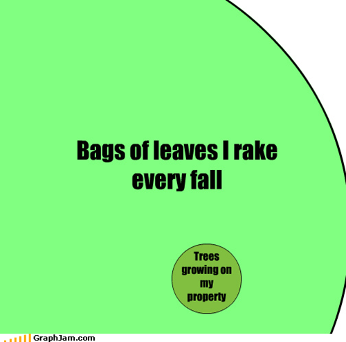 bag,fall,leaves,raking,trees,venn diagram,vortex,where do they come from