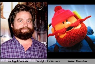 actor,christmas,rudolph the red-nosed reindeer,yukon cornelius,Zach Galifianakis