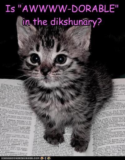 "Is ""AWWWW-DORABLE""  in the dikshunary?"