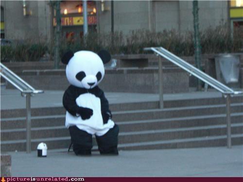 begging,costume,money,pan handling,panda,poor,puns,wtf