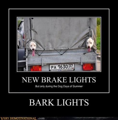 BARK LIGHTS